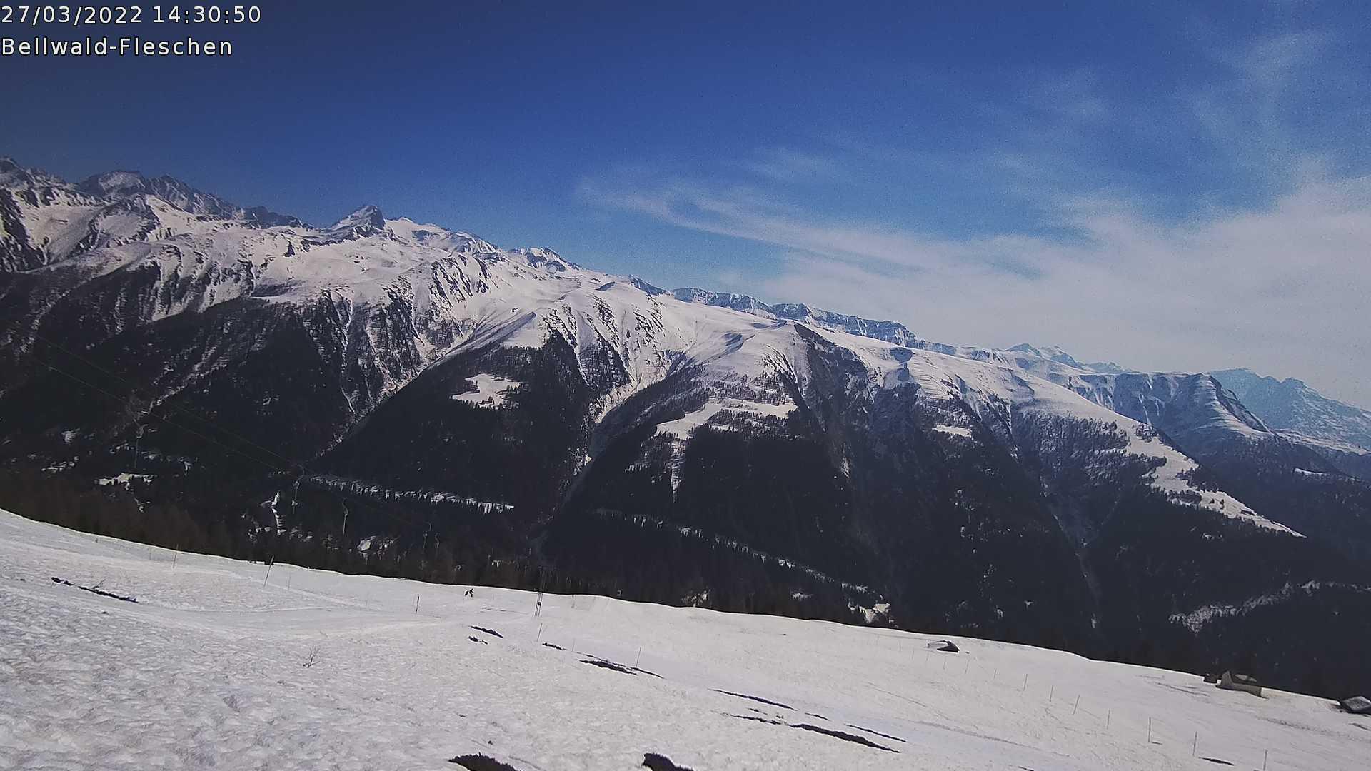 Webcam Bild
